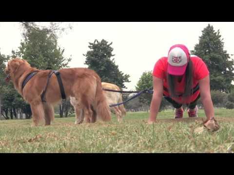 Canicros, un deporte que consiste en correr junto con un perro unido al cuerpo mediante un arnés.