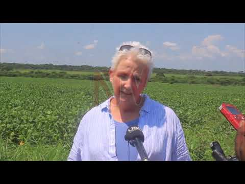 US Ambassador calls out Govt' on policy implementation in agriculture