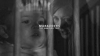 THE MARAUDERS | the hanging tree