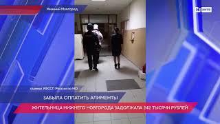Жительница Нижнего Новгорода задолжала 242 тысячи рублей алиментов