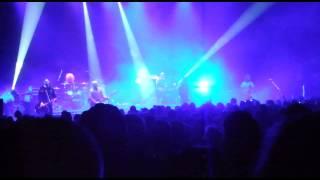 The idea - Adam Ant (live)