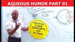 Aqueous Humor - Production, Circulation & Drainage Part 1/2