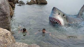 تحميل و مشاهدة أقوى 4 هجمات القرش المخيفة التي تعرض لها البشر ..!! MP3