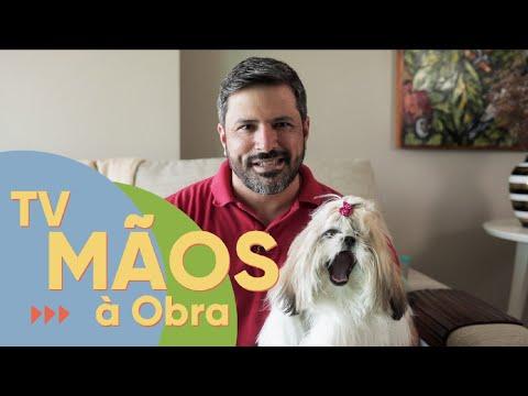 TV Mãos à Obra traz dicas sobre como desestressar o pet durante o isolamento social