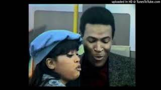 MARVIN GAYE & TAMMIE TERRELL - MEMORY CHEST