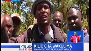 Wakulima kutoka mpaka wa Kitale na Uganda walalama baada ya mahindi yao kukataliwa na NCPB