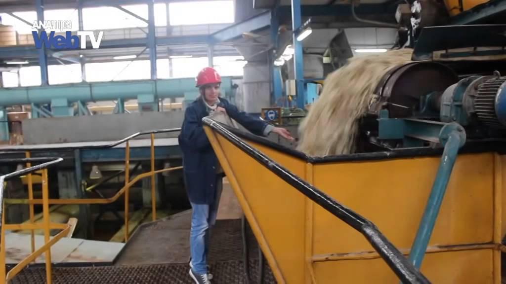 Επαναλειτούργησε το εργοστάσιο της Ελληνικής Βιομηχανίας Ζάχαρης(ΕΒΖ) στην Ορεστιάδα