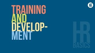 HR Basics: Training and Development