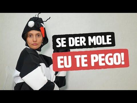 Imagem ilustrativa do vídeo: PARA A DENGUE NÃO TE PEGAR