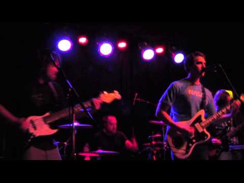 Service Animal @ The Skylark - Cruise Ship