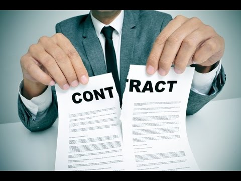 Проблемы Одностороннего Отказа От Договора Оказания Услуг