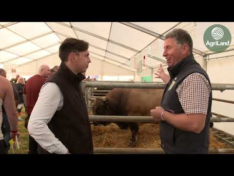 Niall Claffey is deep in discussion about livestock...at this year's 'Ploughing'