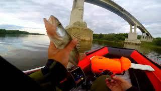 Ловля рыбы на оке в кашире