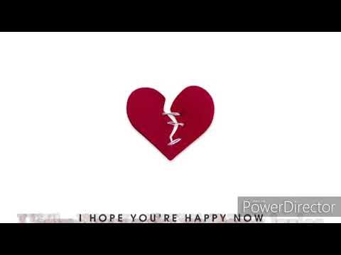 Carly Pearce ft Lee Brice I Hope You're Happy Now lyrics