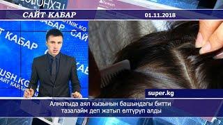 #Сайткабар 01.11.2018 | Алматыда аял кызынын башындагы битти тазалайм деп жатып өлтүрүп алды