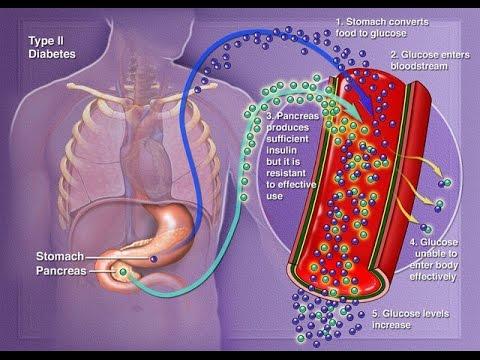 Doentes tratados com diabetes mellitus