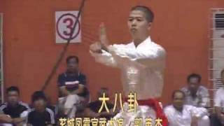 preview picture of video 'Fujian Zhangzhou Martial Arts - Big 8 Trigrams [漳州 -大八卦]'