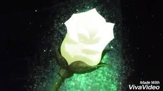 Souseiseki  - (Rozen Maiden) - Souseiseki x kirakishu x jun universitaire AMV rozen maiden 2013
