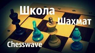Шахматы онлайн\ Играем с подписчиками 🎤 Chess.com