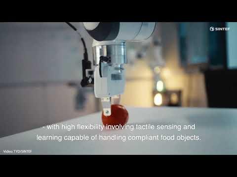 """Når robotens """"øyne"""", """"hjerne"""" og """"hender"""" arbeider sammen vil produktiviteten øke. Det blir mindre svinn, lønnsomheten øker og på denne måten sikrer man fortsatt verdiskaping i Norge, sier  forsker Ekrem Misimi. Her er han i laben. Foto: TYD"""
