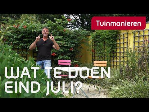 Wat te doen eind juli, in de tuin?