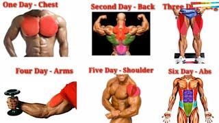 Full Week Gym Workout Plan