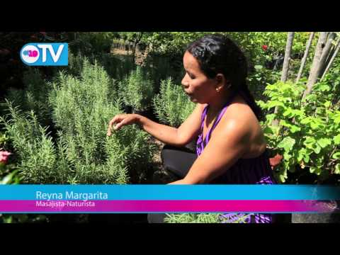 Pobladores de Nancimi promueven medicina natural