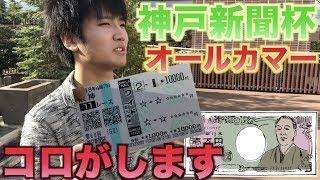 神戸新聞杯&オールカマーコロガシ失敗で即エンディングw