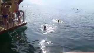 preview picture of video 'Ausflug Khasab Oman  Traditionelle Bootsfahrt durch die Fjordwelt Kunden schwimmen'