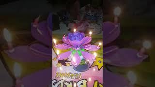 Lilin Ulang tahun Bunga Teratai Bisa Berputar dan ada Musik