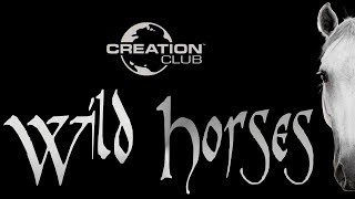 Skyrim Creation Club Wild Horses Locations And Review