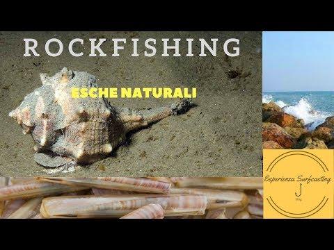 Che scegliere cuori per pesca