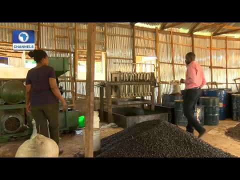 BOI Weekly: Eye On Agro-processing Industries Pt.1