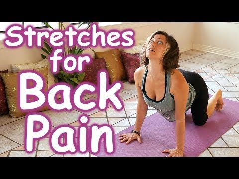 Video Stretches for Back Pain Relief, How to Stretch Routine, Beginners Home Yoga