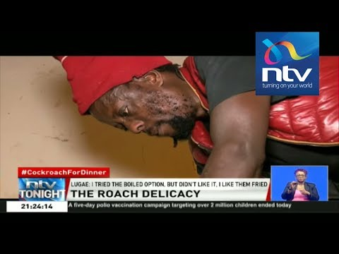 Meet Nairobi man who feeds on cockroaches || #CockroachForDinner