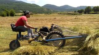Ciruzzo E La Sua  Motofalciatrice BCS 622