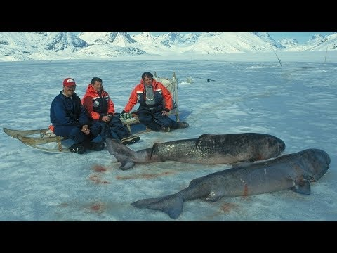 Top 5 Strangest Things Caught While Ice Fishing