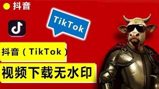 抖音视频下载去水印方法不用翻墙,how to download tik tok videos without watermark