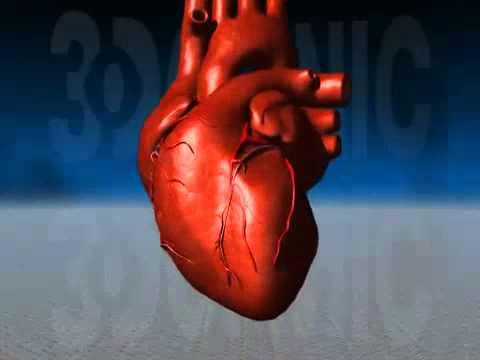 Limpatto dei calcoli renali sulla pressione sanguigna