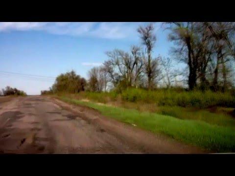 Flaxseed worm