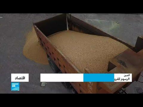 العرب اليوم - الرسوم المفروضة على واردات الصويا الأمريكية