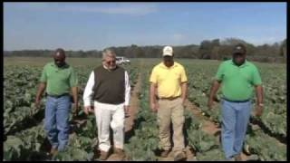 Glory Foods Supports African-American Farmers