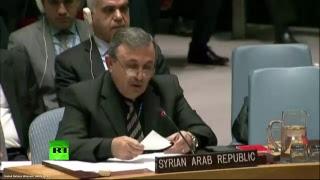 Заседание Совбеза ООН в связи с ракетными ударами США по Сирии
