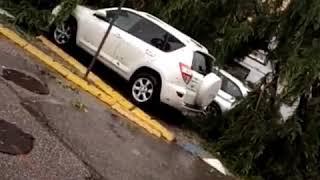 Nubifragio a Verona, danni a edifici, auto e vigneti