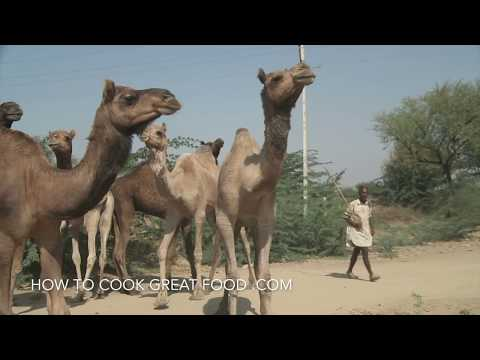 Camel Meat – Camel Recipe – How to cook Camel Stew