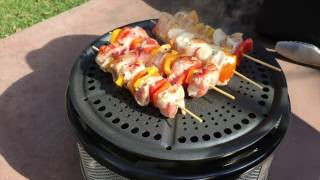Cobb Grill Review - Best portable grill review
