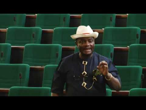 Hon Uzoma Nlem Abonta,16 May 2019   Bill to provide for establishment of the FCT primary health care