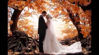 Fall Wedding Decor Ideas On A Budget