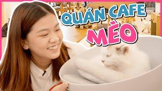 NHI REVIEW QUÁN CAFE MÈO   Ngày chủ nhật của Nhi