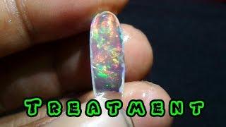 Fakta Treathment Black Opal Kalimaya Dll